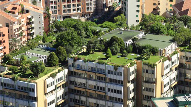 Green roofs help building owners save green