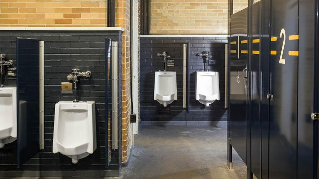Notre Dame renovations focus on saving water
