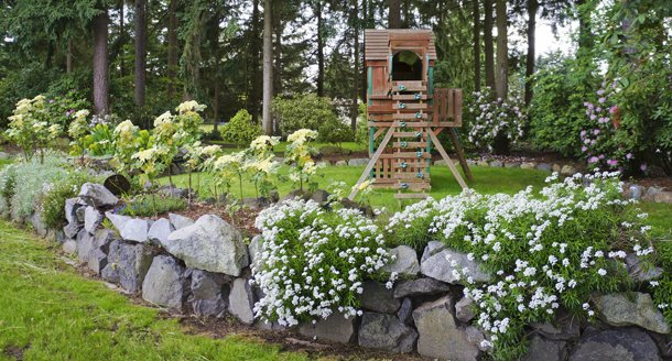 Tips for going green in your backyard