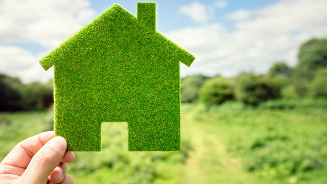 Home Green Home: How to Focus on Sustainability