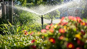 Tips can help save water this spring