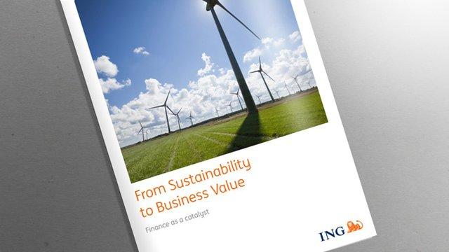 Report: U.S. companies implement sustainability strategies to drive revenues