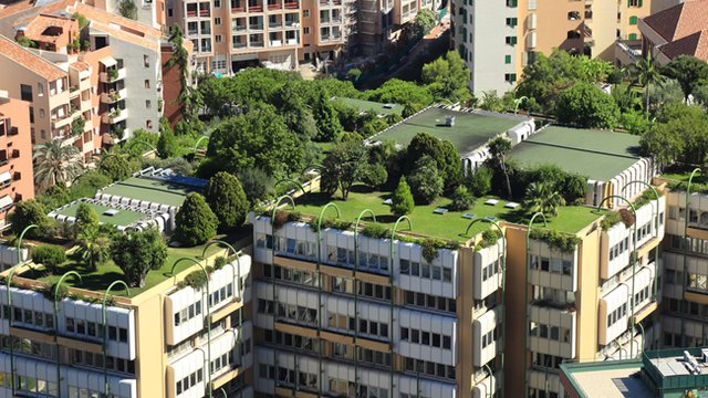 Green Roofs Take Root Worldwide Proud Green Building