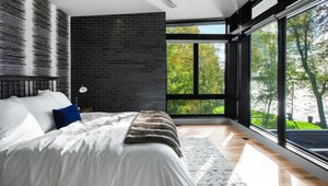 Trendy Black Finish Redefines Window Style