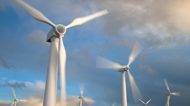 Brown-Forman invests in renewable wind energy