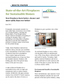 State-of-the-Art Fireplaces for Sustainable Homes