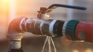 10 pre-spring water-saving tips